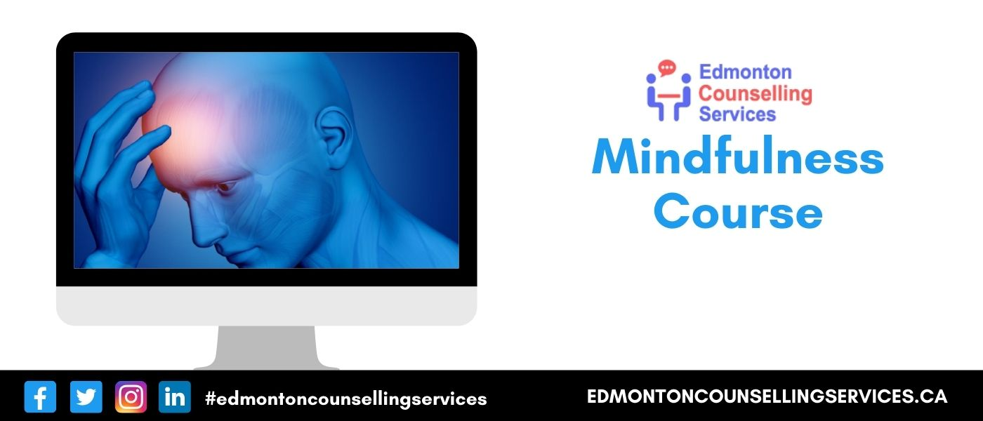 Mindfulness Meditation Course Online Classes  Canada  Fees
